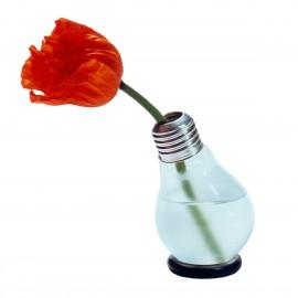 Blühbirne - Glühbirnenvase