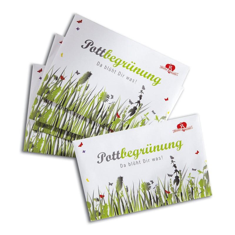 Pottbegrünung - Blumensamen